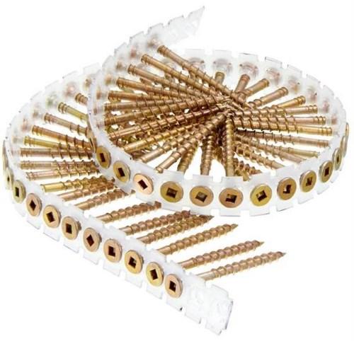 Collated Screws Nail Gun Depot